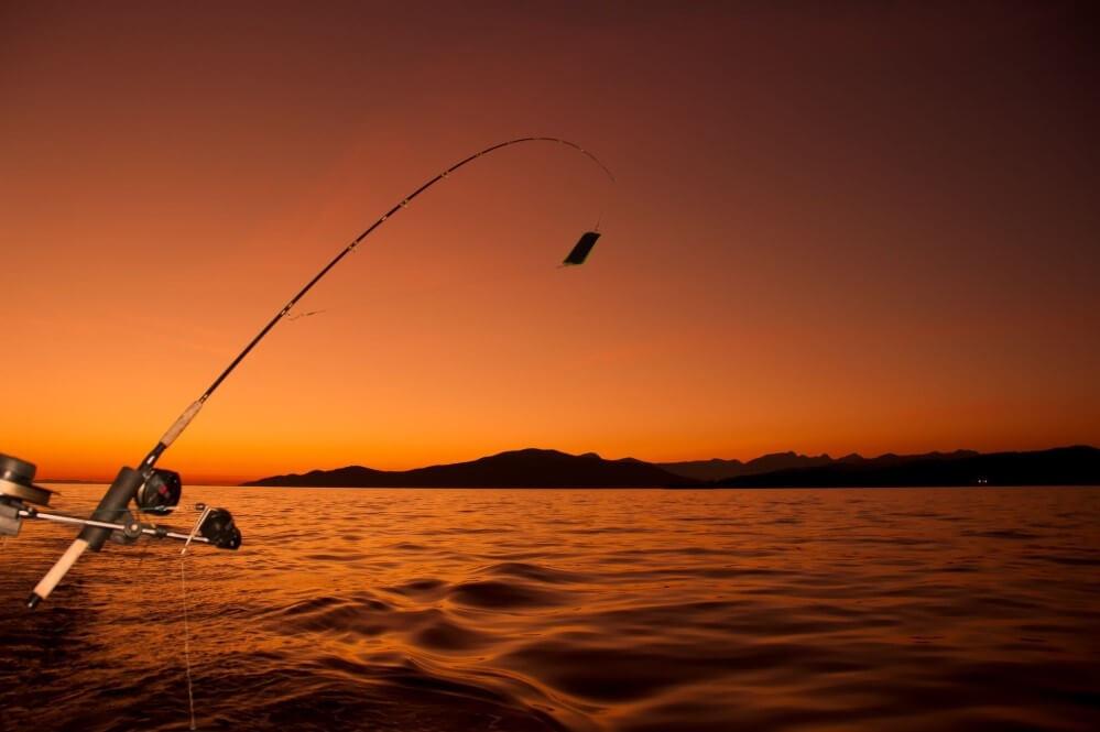 چوب ماهیگیری