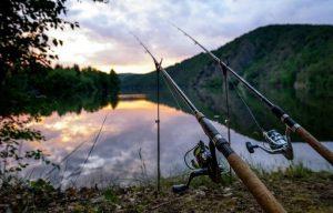 اجزا تشکیل دهنده چوب ماهیگیری