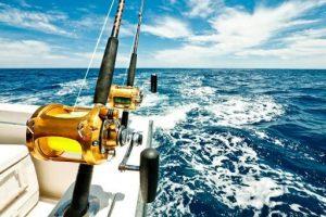 چوب ماهیگیری ترولینگ