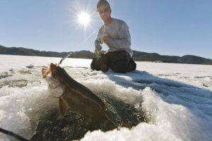چوب ماهیگیری مخصوص در یخ