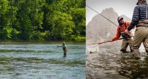 نکات لازم و ضروری برای ماهیگیری