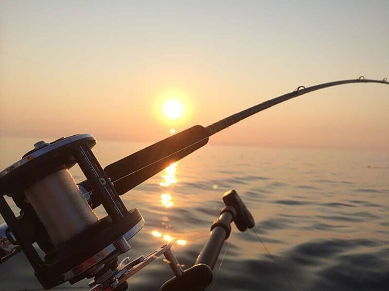 لنسر ماهیگیری