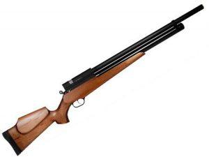 تفنگ ساچمه ای گازی
