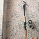 لنسر حرفه ای ماهیگیری